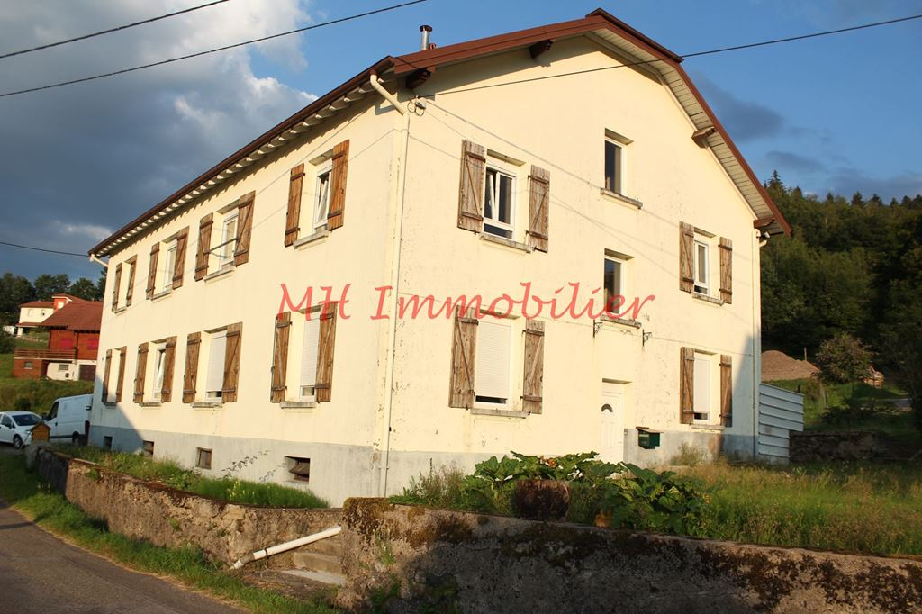 Immeuble ST MAURICE SUR MOSELLE 87000€ Marc HENRY IMMOBILIER